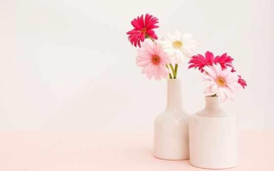 герберы, букет, цветы, ваза, розовые,