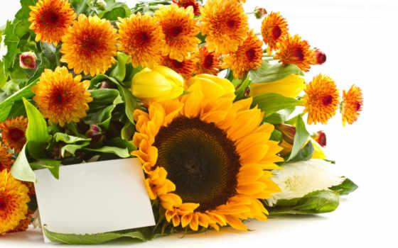 flowers, мб, желтые