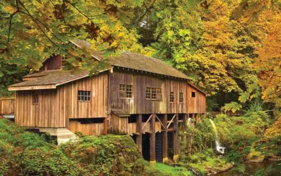 mill, grist, автор, free, лес, кедр