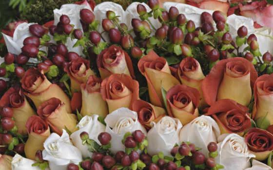цветы, роза, different, букет, smartphone, mobile, white, красивый, пир