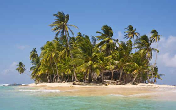 остров, необитаемый, океане, изба, small, пальмами, пальмы,