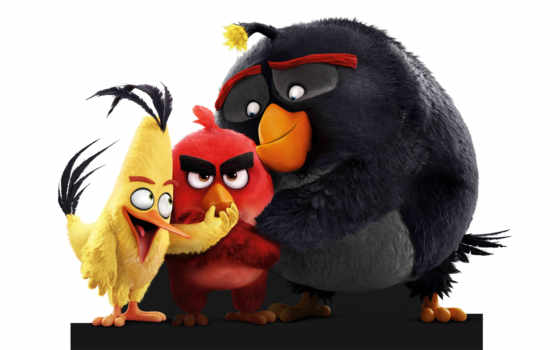 angry, birds, кинотеатр, chuck, бомба, ed, red, movie,