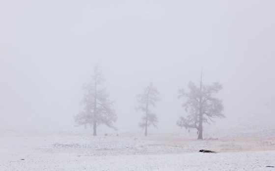 friends, снег, отправить Фон № 140994 разрешение 1920x1080