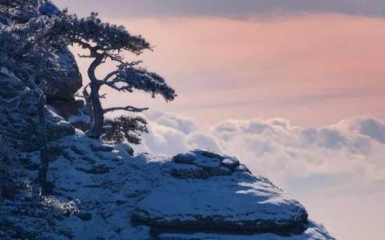 пейзажи -, крыма, крымский, зимнего, зимние, winter, journey, коржонова, крымские, янв,