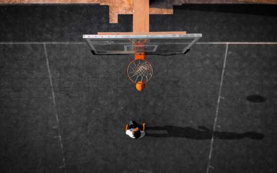 баскетбол, аккаунт, facebook, монитор, see, new, обновление, animal, птица, zmachacek, log