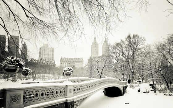 bridge, park