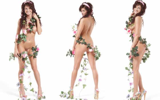 эротика, модель, грудь