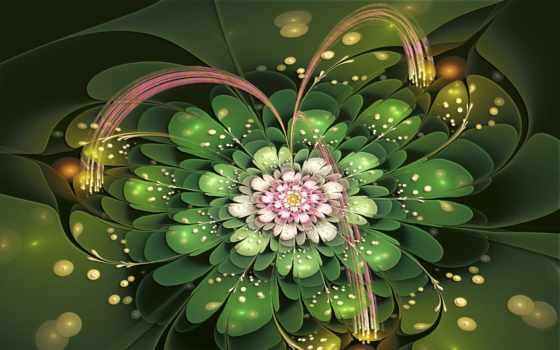 цветы, fractal, petals