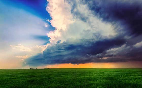 поле, трава, горизонт,