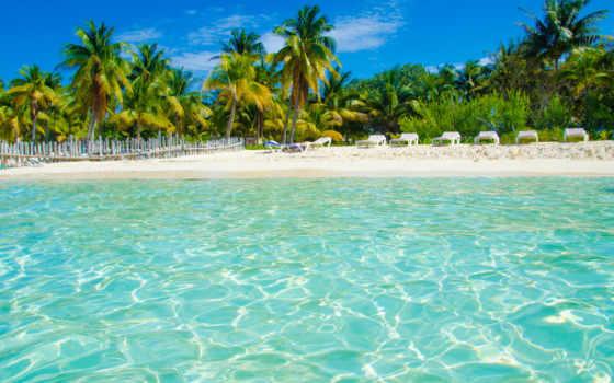 пляж, море, пальмы, tropics, отдых,