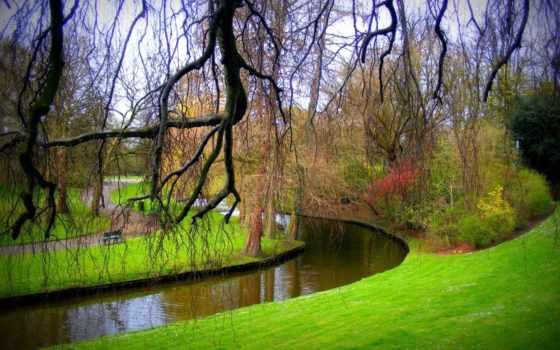 explore, природа, branch, bilene, трава, see, park, идея, доска, pinterest