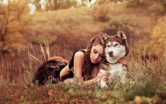 собака, девушка, коллекция, фото