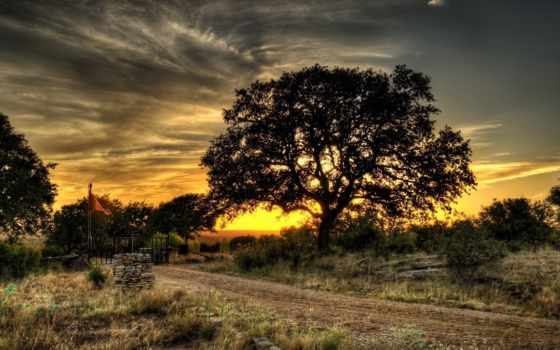 природа, планшетный, дерево, река, national, yosemite, закат, trees,
