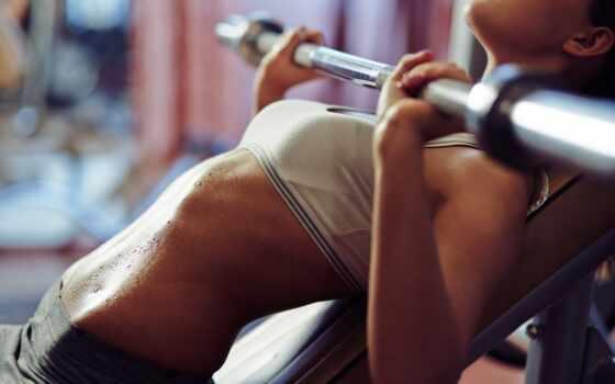 gym, stock, abs, женщина, workout, молодой, images, doing, women, упражнение, photos,