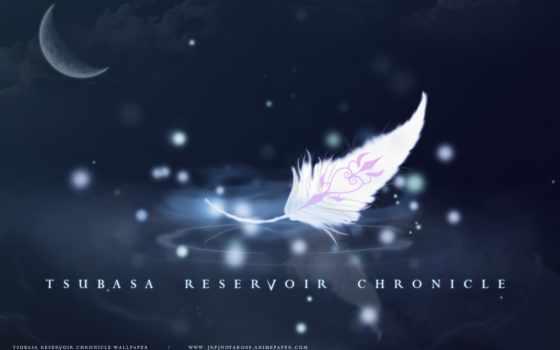 tsubasa, chronicle, reservoir
