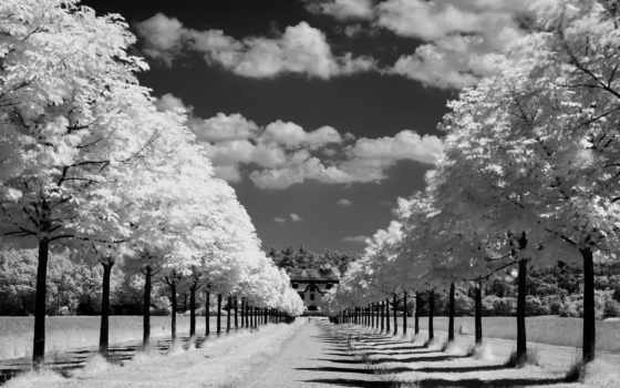 природа, небо Фон № 8311 разрешение 2560x1600