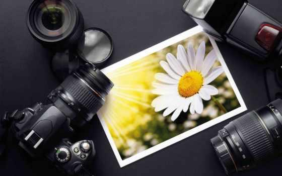 фотоаппарат, расположите, портретном, переверните, размещении, фотографируете, высокие, найдите, улице, июня, если, свой,
