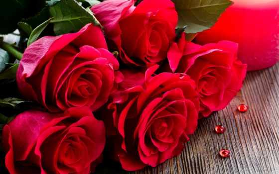 цветы, картинка, розы, red, сердце, прекрасные, many,