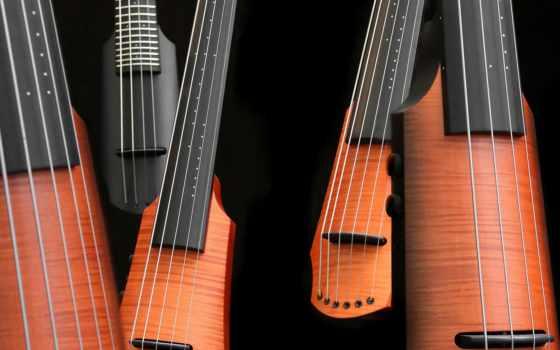 ,, музыкальный инструмент, струнный инструмент, струнный инструмент, гитара, plucked string instruments, string instrument accessory, народный инструмент, bass guitar, charango, Куатро, музыка,  скрипка,