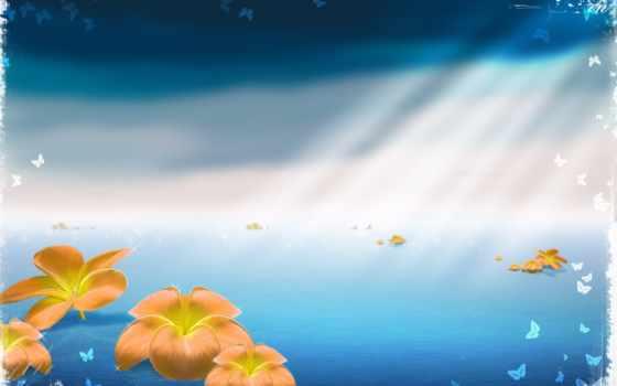 цветы, море, бабочки