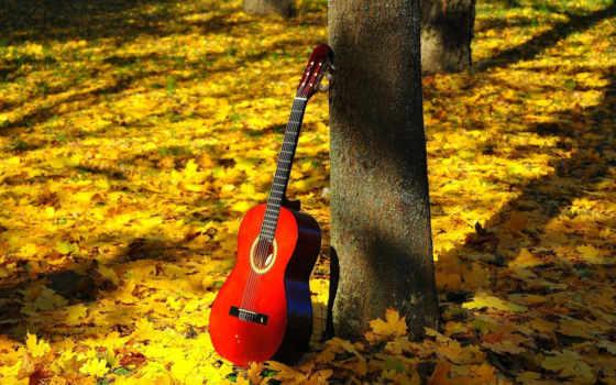 осень, природа, листва Фон № 111828 разрешение 1920x1080