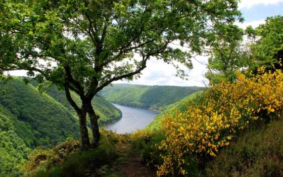 trees, трава, кусты, река, холмы, landscape, trail, цветение, bush, цветы, лес,