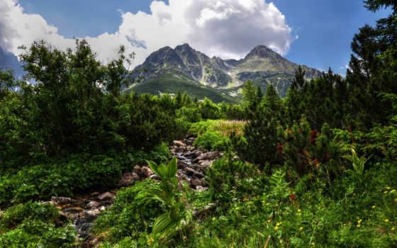 горы, hdr, зелёный, oblaka, растительность, небо, ручей, сосны, водопад, день,