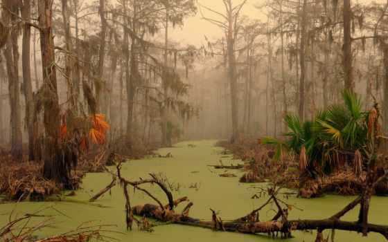 болота, жители, манчак, призраков, swamp, болот, места, болоте, место, местные, жителей,