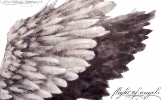 крылья, схема, ангела, preview, схемы, вышивки, she, крыльев, ни, крестом,