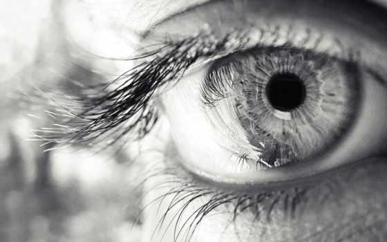 глаз, взгляд, ресницы