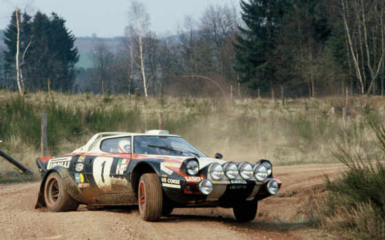 rally, машины