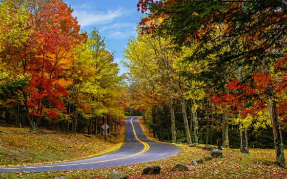 country, roads, осень, дорога, trees, пасть, chrome, landscapes,