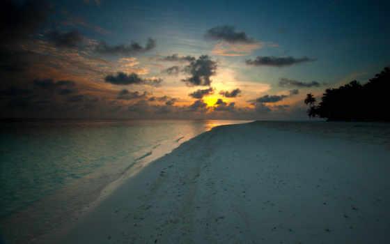 пляж, закат, песок, вечер, берег, море, palm, branch, панорама,