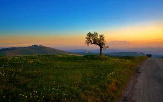 разрешением, дорога, природа, ucoz, холмы, главная, ipad, трава, утро,