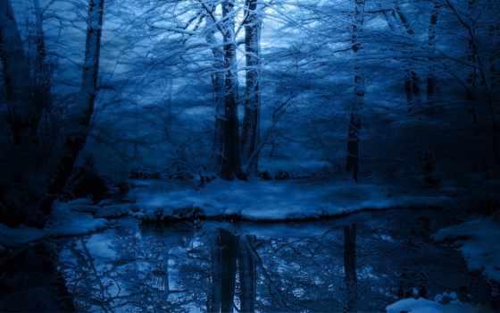 лес, зимняя, лесу, ночь, winter, иней, природа,