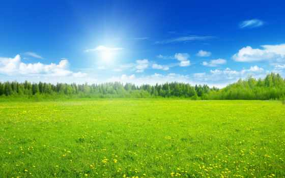 луга, landscape, margin, луг, summer, зелёный, долины, android, установить, разделе, possible,