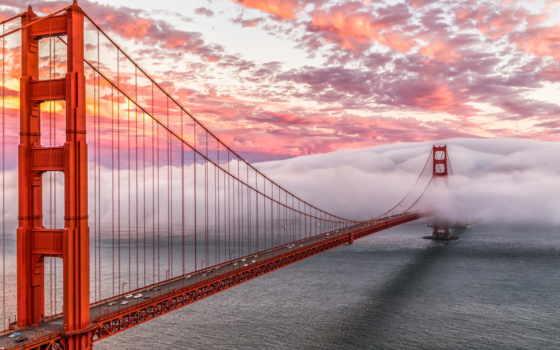 gate, золотистый, мост, suicide, san, francisco, are,