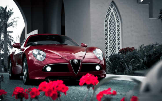 alfa, romeo, competizione, car, sports, cars, desktop,