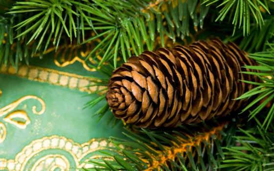 год, new, sxga, можно, эти, дерево, найти, тегам, быстро, ready, wsxga, следующим,