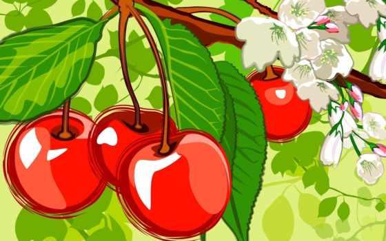 cherry, телефон, garden, картинку, скачати, огород, дачный, своими, вишни, рисунки, ягоды,