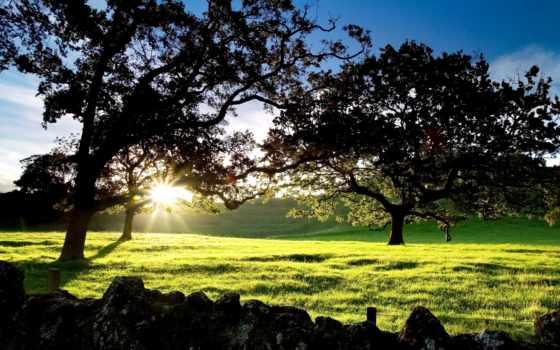 природа, красивые, туры