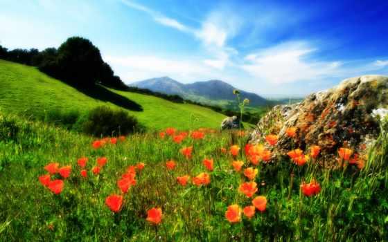 , весна, россии, природа, море, summer, hdr, холм, philippines, mountains,
