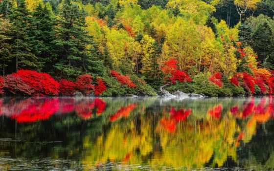 природа, осень Фон № 33544 разрешение 2560x1600