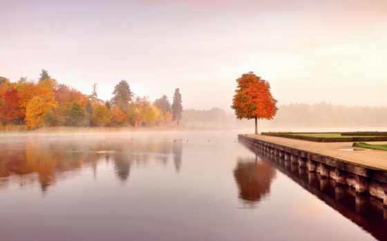 природа, осень, набережна