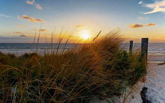 morze, plaża, słońca, promienie, трава, trawy, пляже, закат,