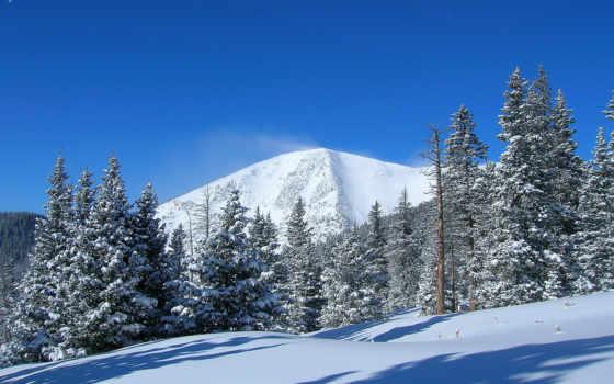 winter, imagini, trees, гора, снег, landscape, high, fundal,