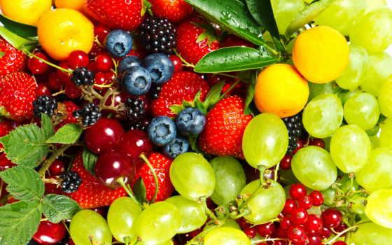 фрукты, ягоды, сочные, еда, производить, разное,