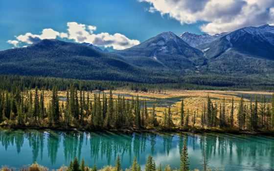 бант, река, альберта, канада, канадский, бою, горы, trees,