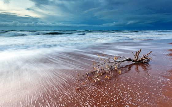 пляж, plage, une, journée, страница, bonne,