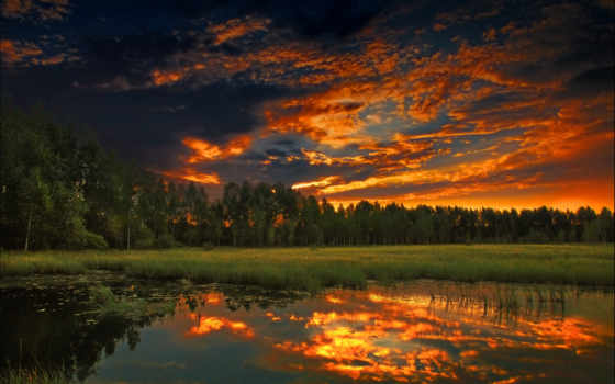лес, лето, облака, за, лесом, вечер, природа, озеро,